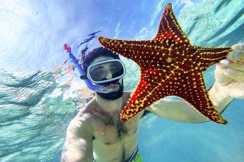 Estrella de Mar en la Piscina Natural